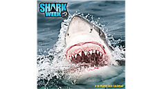Shark Week 12x12 Monthly Wall Calendar (Item # DDW240)
