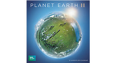 Planet Earth Wall Calendar (Item # DDW247)