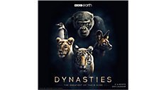 Dynasties 12x12 Monthly Wall Calendar (Item # DDW293)