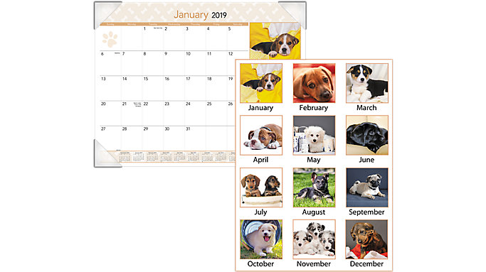 AT-A-GLANCE Puppies Monthly Desk Pad  (DMD166)