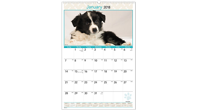 AT-A-GLANCE Puppies Monthly Wall Calendar  (DMW167)