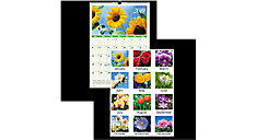 Flower Garden Monthly Wall Calendar (Item # DMW300)