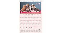 Kittens Monthly Wall Calendar (Item # DMW400)