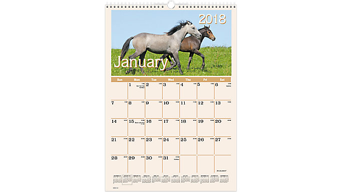 AT-A-GLANCE Horses Monthly Wall Calendar  (DMW401)