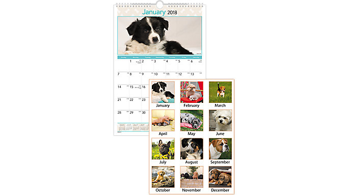 AT-A-GLANCE Puppies Monthly Wall Calendar  (DMW404)