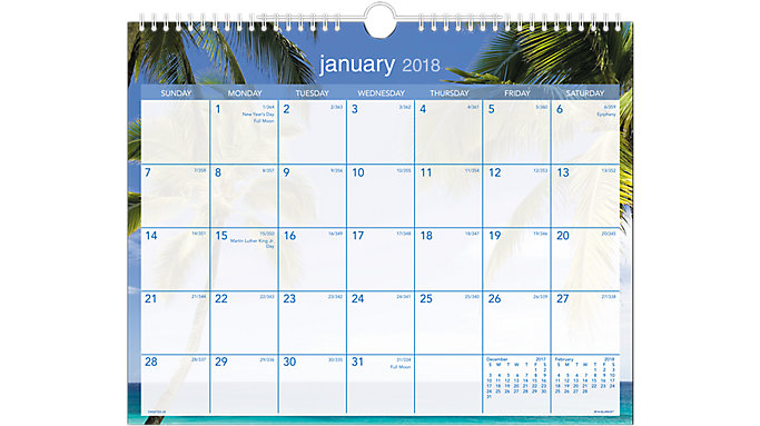 AT-A-GLANCE Tropical Escape Wall Calendar  (DMWTE8)