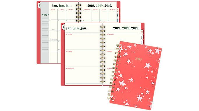 Emily + Meritt The Artist Star Weekly-Monthly Small Planner  (EM100-200)