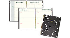 The Artist Star Weekly-Monthly Large Planner (Item # EM100-905)