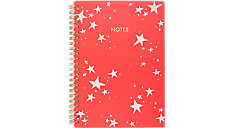 The Artist Star Small Notebook (Item # EM101-405)