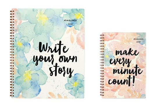 B-Positive Planner by AT-A-GLANCE