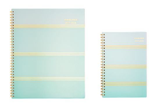 Ombre Planner by AT-A-GLANCE