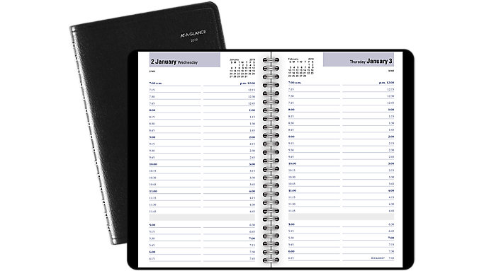 AT-A-GLANCE DayMinder Daily Appointment Book  (G100)