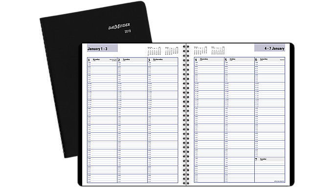 AT-A-GLANCE DayMinder Weekly Appointment Book  (G520)