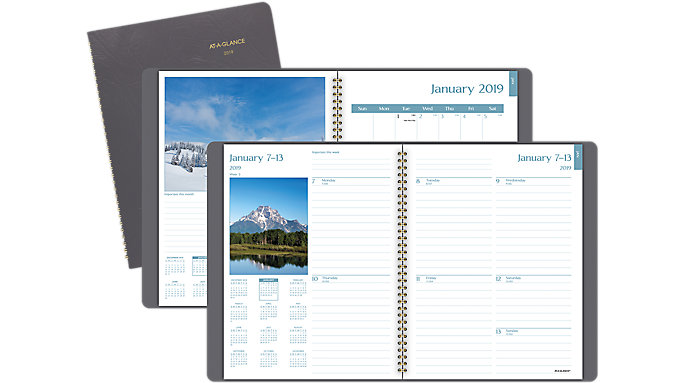 AT-A-GLANCE DayMinder Fashion Scenic Weekly-Monthly Planner  (G700)