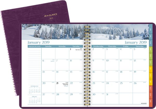 At-A-Glance DayMinder Scenic Monthly Planner -