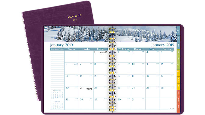 AT-A-GLANCE DayMinder Scenic Monthly Planner  (G703)
