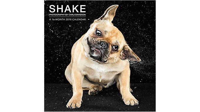 Mead SHAKE Photography by Carli Davidson Wall Calendar  (HTH521)