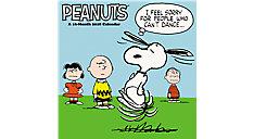 Peanuts Wall Calendar (Item # HTH535)