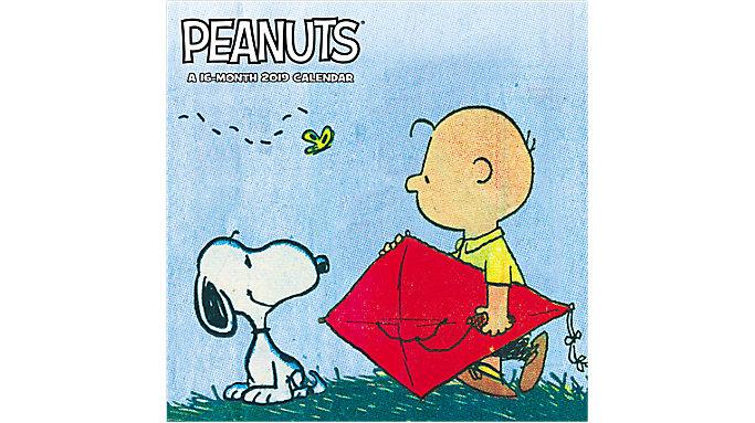 Mead Peanuts Wall Calendar  (HTH535)