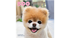 BOO The Worlds Cutest Dog Wall Calendar (Item # HTH549)