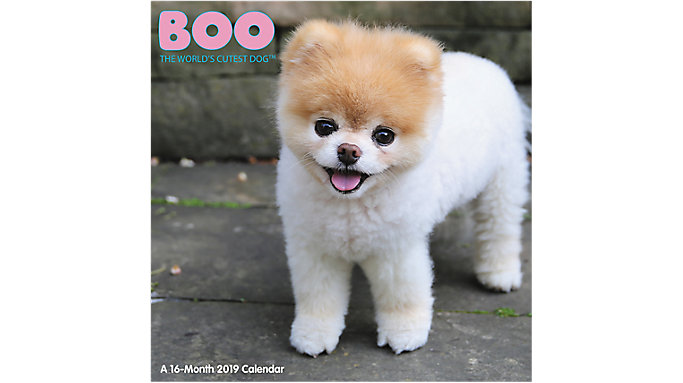 Mead BOO The Worlds Cutest Dog Wall Calendar  (HTH549)