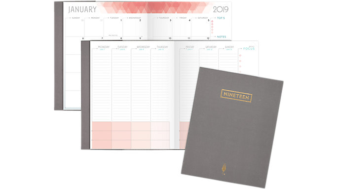 inkWELL Press Classic liveWELL Weekly-Monthly Planner  (IP621G-807)
