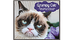 Grumpy Cat Year-In-A-Box Calendar (Item # LMB247)