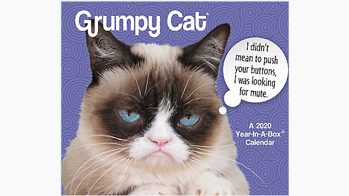 Grumpy Cat Calendar 2020 January Grumpy Cat Calendar | LMB247 | Year In A Box