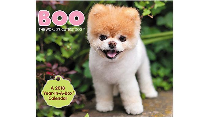Mead BOO The Worlds Cutest Dog Year-In-A-Box Calendar  (LMB252)