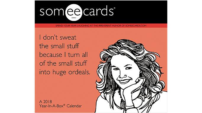 Mead Someecards Year-In-A-Box Calendar  (LMB260)