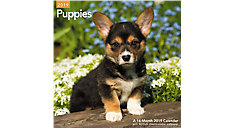 Puppies Wall Calendar (Item # LME100)