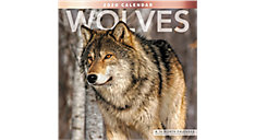 Wolves 12x12 Monthly Wall Calendar (Item # LME168)