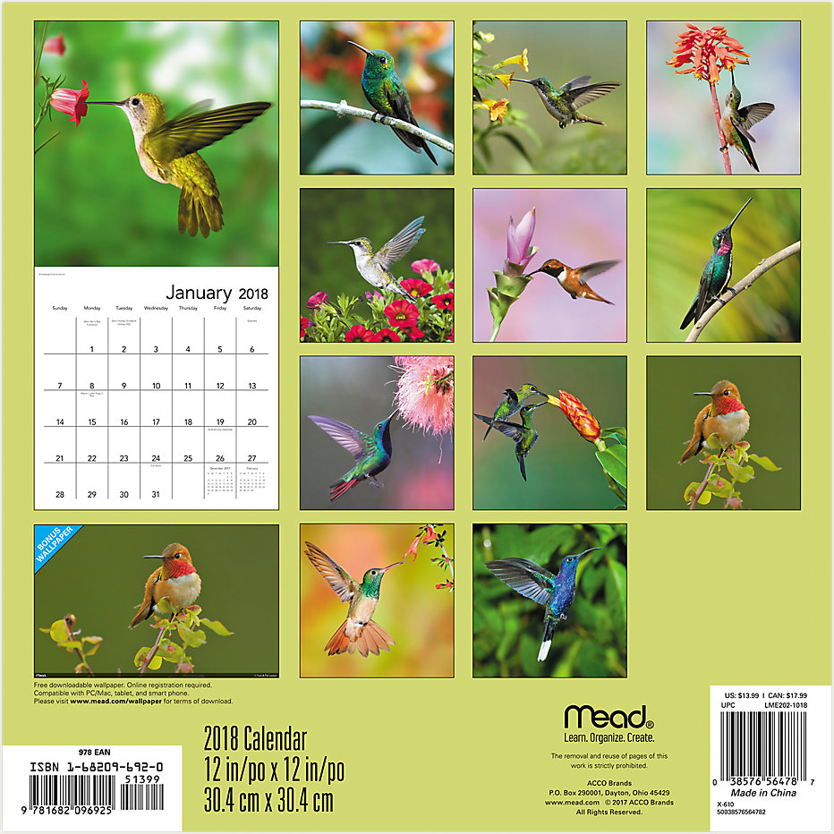 hummingbirds wall calendar lme202 mead