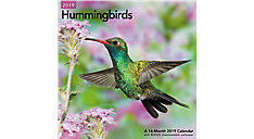Hummingbirds Wall Calendar (Item # LME202)