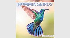 Hummingbirds 12x12 Monthly Wall Calendar (Item # LME202)