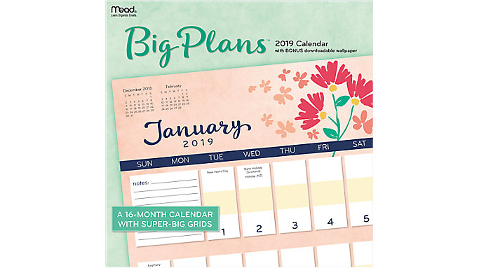 Mead Big Plans Wall Calendar  (LME206)