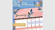Big Plans 12x12 Monthly Wall Calendar (Item # LME206)