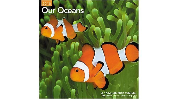 Mead Our Oceans Wall Calendar  (LME221)