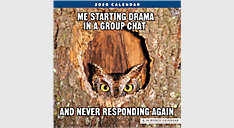 Animal Memes 12x12 Monthly Wall Calendar (Item # LME310)