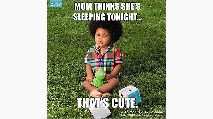 baby memes wall calendar lme311 mead