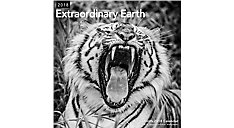 Extraordinary Earth Wall Calendar (Item # LME318)