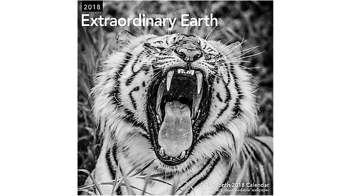 Mead Extraordinary Earth Wall Calendar  (LME318)