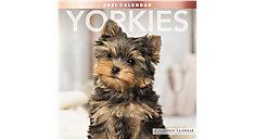 Yorkies 12x12 Monthly Wall Calendar (Item # LME323)