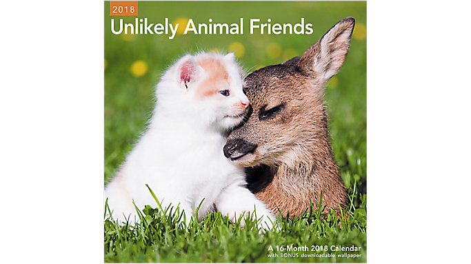 Mead Unikely Animal Friends Wall Calendar  (LME337)