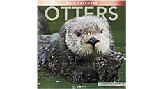 Otters 12x12 Monthly Wall Calendar (Item # LME345)