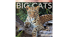 Big Cats 12x12 Monthly Wall Calendar (Item # LME347)