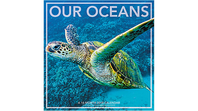 Landmark Our Oceans Wall Calendar  (LML722)