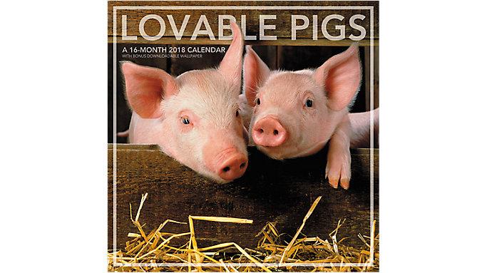 Landmark Lovable Pigs Wall Calendar  (LML743)
