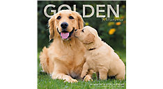 Golden Retrievers Wall Calendar (Item # LML751)