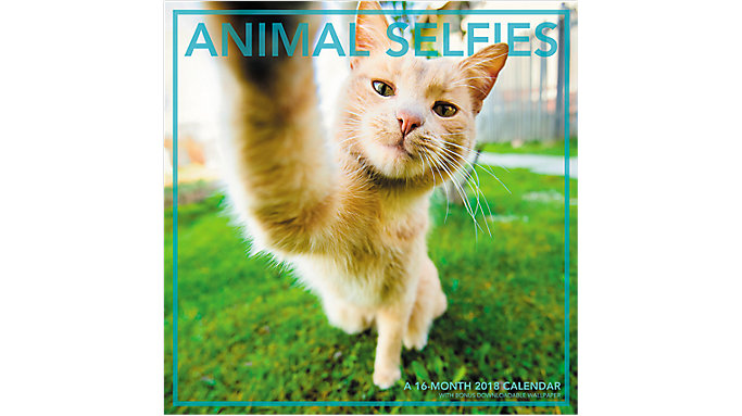 Landmark Animal Selfies Wall Calendar  (LML757)